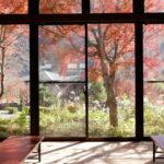 もえる秋「関東の紅葉」ベスト5を紹介!