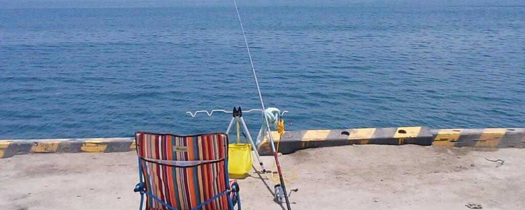 釣りでは魚を新鮮に持ち帰る